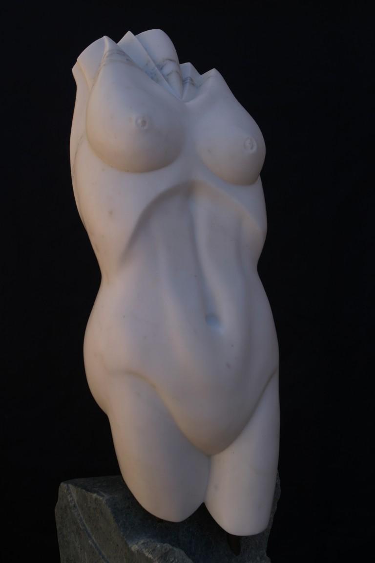White Torso
